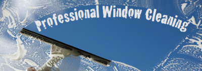 Three Important Reasons To Choose Professional Window Cleaning Company