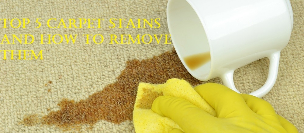 Top 5 Carpet Stains and How to Remove Them