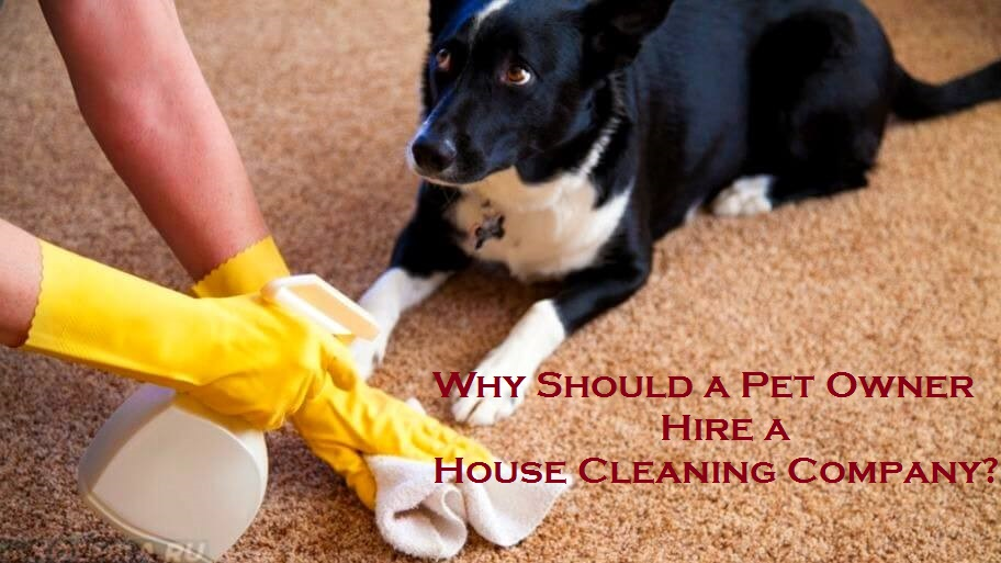 Why Should a Pet Owner Hire a House Cleaning Company?