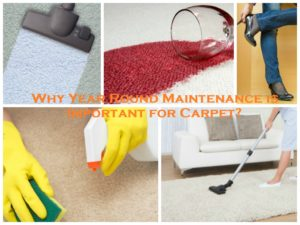 WHY YEAR ROUND MAINTENANCE IS IMPORTANT FOR CARPET?