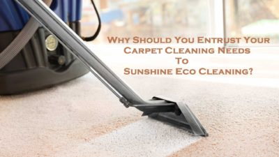 Why Should You Entrust Your Carpet Cleaning Needs To Sunshine Eco Cleaning?