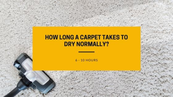 How long a carpet takes to dry completely_