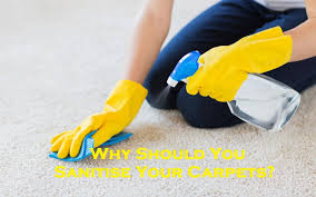 Why Should You Sanitise Your Carpets?
