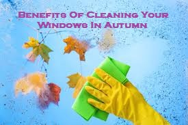 Benefits Of Cleaning Your Windows In Autumn
