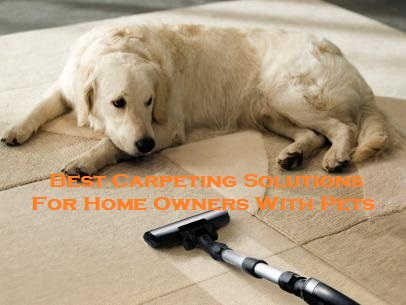 Best Carpeting Solutions For Home Owners With Pets