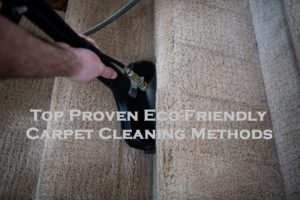 Top Proven Eco-Friendly Carpet Cleaning Methods