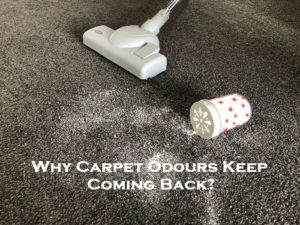 Why Carpet Odours Keep Coming Back?