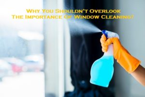Why You Shouldn't Overlook The Importance Of Window Cleaning?